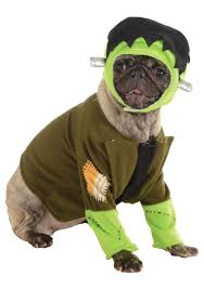 Frankenstein Monster High Halloween Costumes by Frankenstein Pet Costume