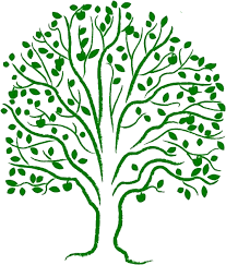 the tree of federation of methodist and uniting