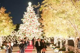 tokyo winter illuminations top 10 picks tokyo cheapo
