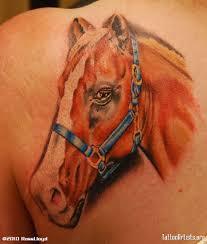 horse portrait tattoo on back of shoulder
