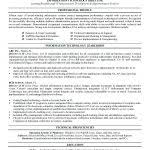 Resume Template 2014 Resume Information Technology Resume Examples Information