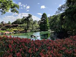 Auburn Botanical Garden Auburn Botanic Gardens With Japanese Gardens In Sydney