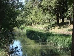 Bîc River