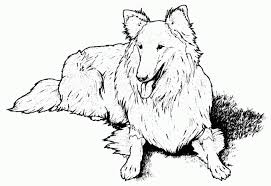 dog house coloring pages dog coloring page color pages printable dogcoloringpages gif