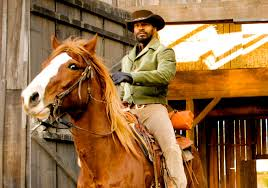 Django Meme - from script to screen the 12 biggest deleted unfilmed scenes from