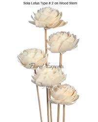 sola flowers manufacturer exporters bulk suppliers of sola flowers wood flowers