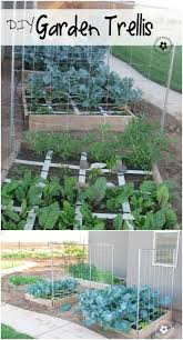 Vegetable Trellis 20 Easy Diy Trellis Ideas To Add Charm And Functionality To Your