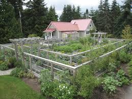 vegetable garden fence deer decorating clear