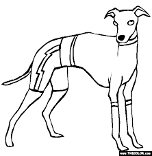 Dogs Online Coloring Pages Page 1 Coloring Page Dogs