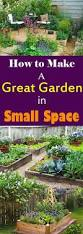 how to create a great garden in small space balcony garden web