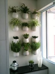 Kitchen Herb Garden Design Innovative Kitchen Wall Herb Garden And Indoor Kitchen Herb Garden