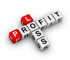 12 Month Profit And Loss Projection Excel Template 12 Month Profit And Loss Projection