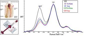infrared spectroscopy dipartimento di scienze della vita e dell