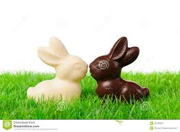 chocolate rabbits black and white easter rabbits stock image image of dreams