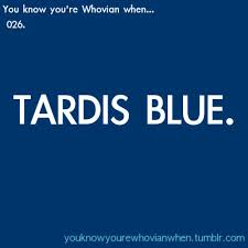 91 best the doctor u0026 the tardis images on pinterest dr who the