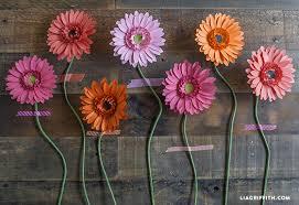 gerbera daisies diy gerbera paper flower