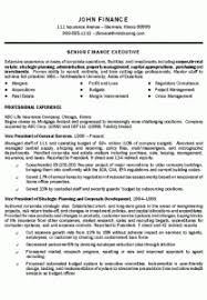 Mis Resume Example Top Executive Resume Format 2016 2017 Mistakes Resume 2016