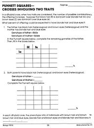 dihybrid cross punnett square worksheet 28 templates dihybrid