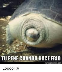 Meme Pene - tu pene cuando hace frio www rememescom looool v espanol meme on