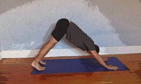 featured pose downward facing dog pose yoga for healthy aging