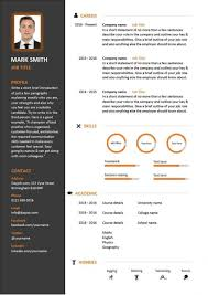 Social Media Resume Example by Curriculum Vitae Build Free High Information On Resume