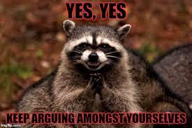 Funny Raccoon Meme - evil plotting raccoon meme imgflip