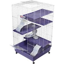 Cages For Guinea Pigs Kaytee Ferret Home Plus Petco