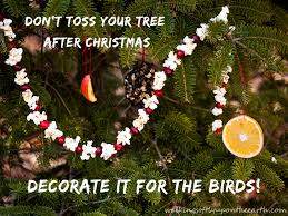 bird seed ornaments archives