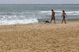 Texas beaches images National report identifies texas beaches with polluted water jpg