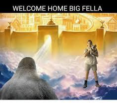 Welcome Home Meme - welcome home big fella meme on me me