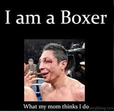 Boxer Meme - 70 boxing memes for you