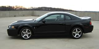 2003 Black Mustang For Sale 2003 Cobra Black Dc Area Ford Mustang Forums Corral