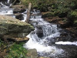 Delaware waterfalls images File ricketts glen state park delaware falls 2 jpg wikimedia commons jpg
