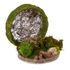 terrarium kits u0026 fairy garden supplies