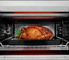 Toaster Oven Turkey 12