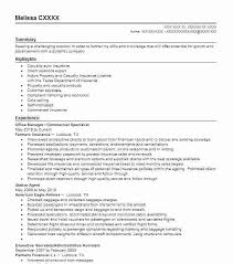 account manager resumes account manager resume exles skywaitress co