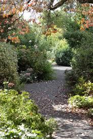 Botanical Gardens Volunteer by Join Volunteer U2014 Rogerson Clematis Garden