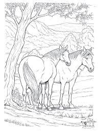 horses coloring pages coloring pages difficult