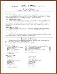 Director Of Nursing Resume Sample Resume Writing Template Writing Resume Sample