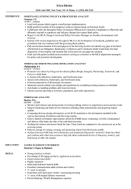 sle resume for business analysts degree celsius symbol mortgage analyst resume sles velvet jobs