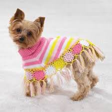 pet sweaters keep your warm with a crochet sweater crochet and knit