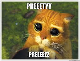 Sad Face Meme - sad face cat meme bigking keywords and pictures