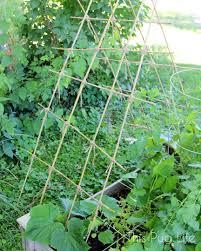 diy bamboo garden trellis u2013 this pug life