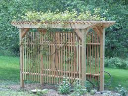 grapevine trellis designs my husband built two of these to try