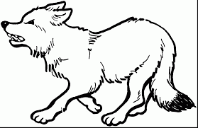 beautiful dragoart chibi wolf coloring pages with wolf coloring