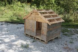 How To Build A Floor For A House How To Build A Doghouse Out Of Pallets 8840