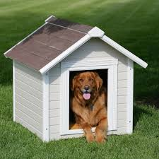 Patio & Outdoor Dog House Designs For Two Dogs With House Dogs