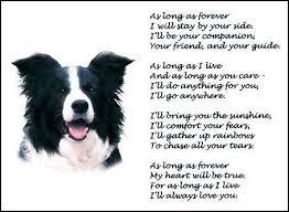 boxer dog in heaven the 25 best dog poems ideas on pinterest rainbow bridge dog