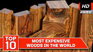 top 10 most expensive woods in the