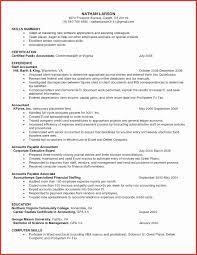 best resume format for executives resume sle for account executive best of 15 lovely resume format